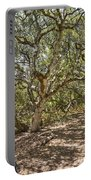 Oak Forest - The Magical And Mysterious Trees Of The Los Osos Oak Reserve Portable Battery Charger