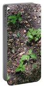 Oak Nursery Portable Battery Charger