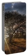 Oak Tree At The Plateau Portable Battery Charger