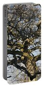 Oak Tree In Winter Portable Battery Charger