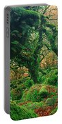Oak Trees In A Forest, Wistmans Wood Portable Battery Charger
