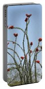 Ocatillo With Red Blossoms Portable Battery Charger