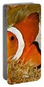 Ocellaris Clown Fish No 1 Portable Battery Charger