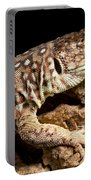 Ocellated Lizard Timon Lepidus Portable Battery Charger
