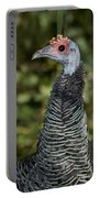 Ocellated Turkey Hen Portable Battery Charger