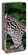 Ocelot Felis Pardalis Wildlife Rescue Portable Battery Charger