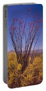 Ocotillo And Palo Verde Portable Battery Charger