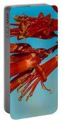 Ocotillo Flowers Portable Battery Charger by Robert Bales