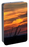Ocotillo Sunset Portable Battery Charger