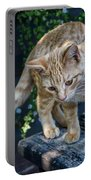 October Kitten #2 Portable Battery Charger