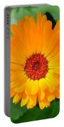 October's Summer Sunlit Marigold  Portable Battery Charger
