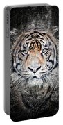 Of Tigers And Stone Portable Battery Charger