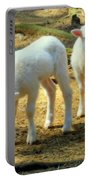 Oh Little Lamb Portable Battery Charger