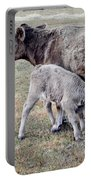 Oil Paint Look Cow And Calf Portrait Usa Portable Battery Charger