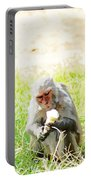 Oil Painting - A Monkey Eating An Ice Cream Portable Battery Charger