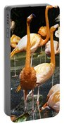Oil Painting - A Number Of Flamingos With Their Heads Held High Inside The Jurong Bird Park Portable Battery Charger