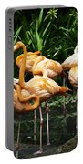 Oil Painting - Number Of Flamingos Inside The Jurong Bird Park Portable Battery Charger