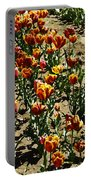 Oil Painting - Red And Yellow Tulips Inside The Tulip Garden In Srinagar Portable Battery Charger