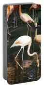 Oil Painting - The Head Of A Flamingo Under Water In The Jurong Bird Park In Singapore Portable Battery Charger
