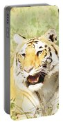 Oil Painting - An Alert Tiger Portable Battery Charger