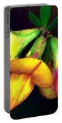 Yellow And Orange Trefoil  Portable Battery Charger