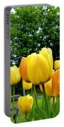 Okanagan Valley Tulips Portable Battery Charger