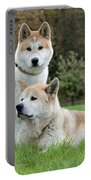 Old And Young Akita Inu Portable Battery Charger