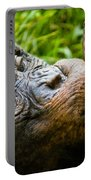Old Chimp Portable Battery Charger