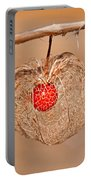 Old Chinese Lantern Pod Art Prints Portable Battery Charger