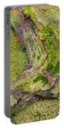 Old Decaying Lichens Moss Covered Taiga Tree Trunk Portable Battery Charger