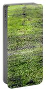 Old Green Grass Portable Battery Charger