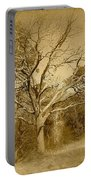 Old Haunted Tree In Sepia Portable Battery Charger