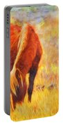 Old Mare Portable Battery Charger