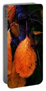 Old Orange Leaves Portable Battery Charger