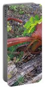 Old Rusty Bike In The Weeds 2 Portable Battery Charger