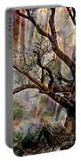 Old Tree Photoart Portable Battery Charger