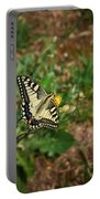 Old World Swallowtail. Montorfano. Cologne Portable Battery Charger