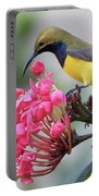 Olive-backed Sunbird Male With Flower Portable Battery Charger