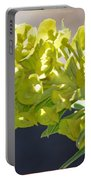 Olive Fluorescence Portable Battery Charger