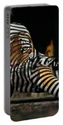 Olivia Wild And The Tiger Portable Battery Charger