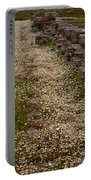 Olympia Ruins And Wild Flowers   #9679 Portable Battery Charger