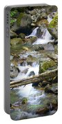 Olympic Range Stream Portable Battery Charger