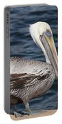 On The Edge - Brown Pelican Portable Battery Charger
