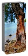 On The Shore 1. Mauritius Portable Battery Charger