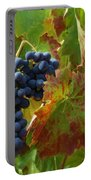 On The Vine Portable Battery Charger