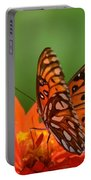 On The Wings Of A Butterfly Portable Battery Charger