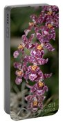 Oncidium Portable Battery Charger