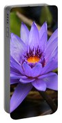 One Purple Water Lily Portable Battery Charger by Carol Groenen