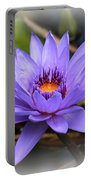 One Purple Water Lily With Vignette Portable Battery Charger