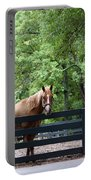 One Very Pretty Hilton Head Island Horse Portable Battery Charger